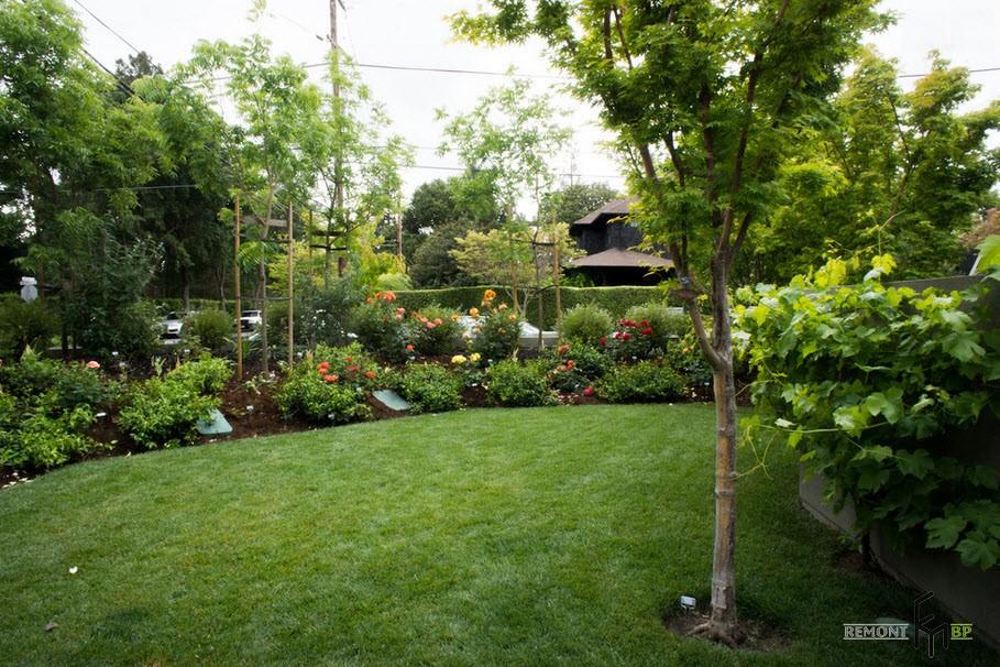 Сад с газоном