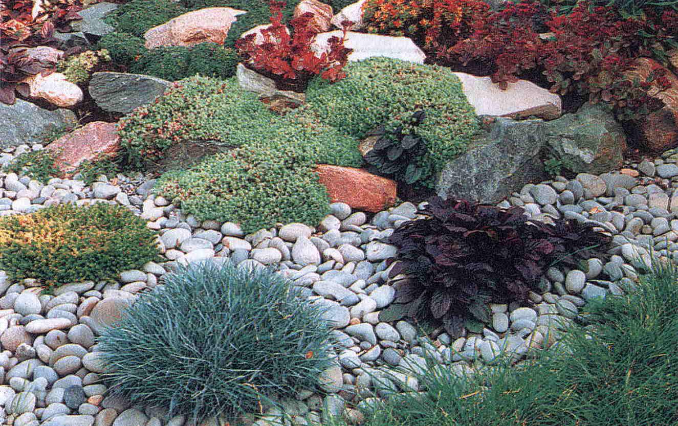 mini-garden-13